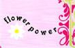www.flowerpowercy.com