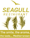 www.seagullcyprus.com